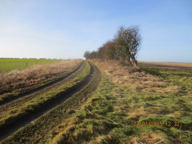 1-20140124-Wolds